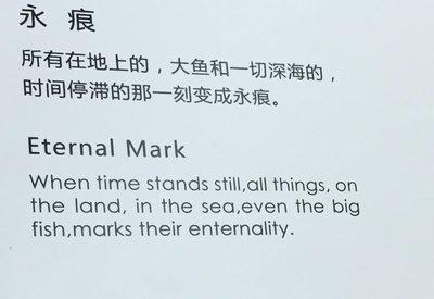 Chinglish at art display in mall