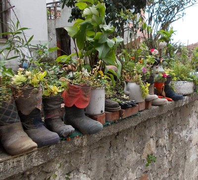 Flower pots in Amasra Turkey on the Black Sea