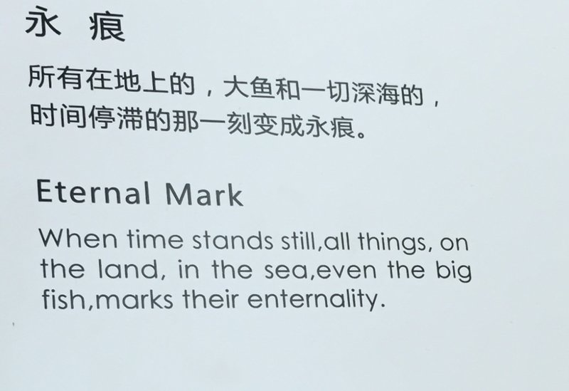 Chinglish at art display in mall