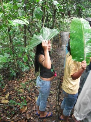 Big Amazon Leaves - great substitutes for umbrellas!