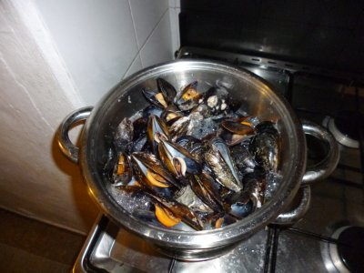 Luz: Mussels for Paella