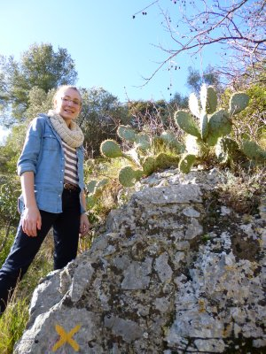 Cavaillon:Catus along the walk up the bluff