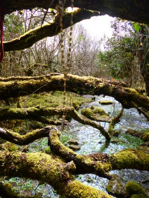 A Holy Well on the Edge of the Burren