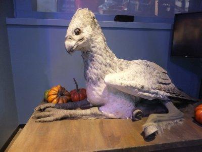 Animatronic Buckbeak