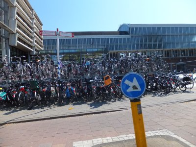 Bikes at a University in Haarlem