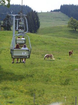 Alpsee bergwelt area
