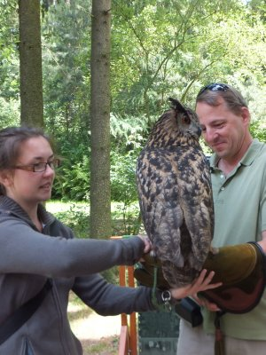 Becoming an Honorary Owl Keeper