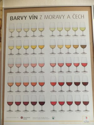 Wine Colour Chart