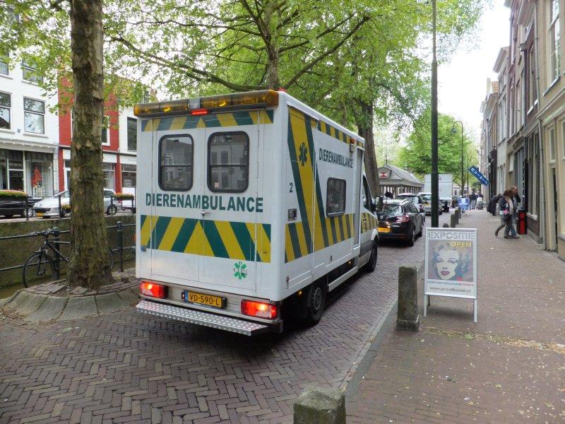 Animal Ambulance in Gouda