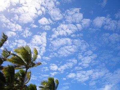Schaefchen Wolken...