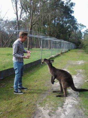 will and the kanga!