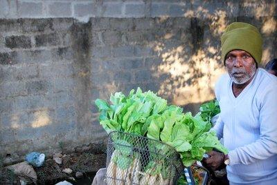 Peddling Produce