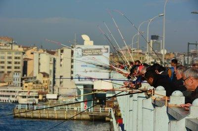 Vissen vanaf de Galatabrug.