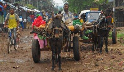 Markt van Bahir Dhar