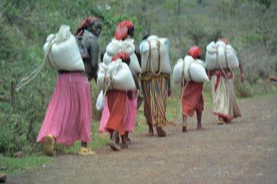 Zuid Ethiopie --Konso