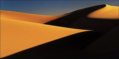 The Dune