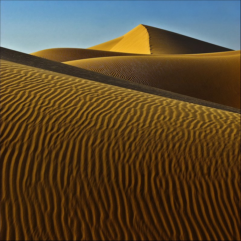 The Golden Sahara