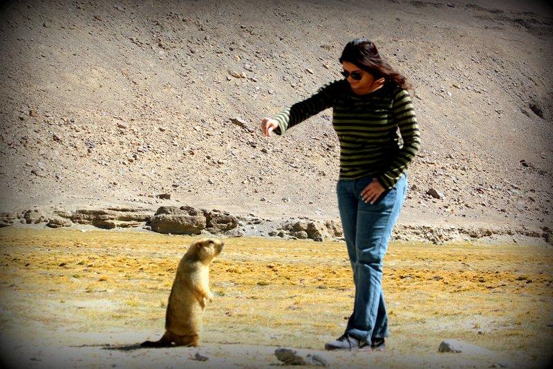 Me & Marmot
