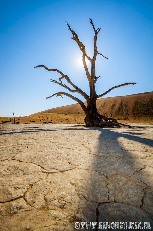Deadvlei