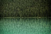 Reflections at Lake Louise