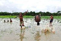 Flooded Playfields
