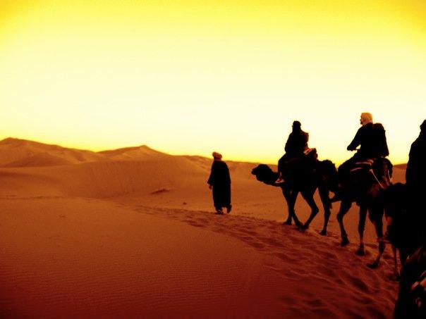 camel trek;marrakech-merzouga