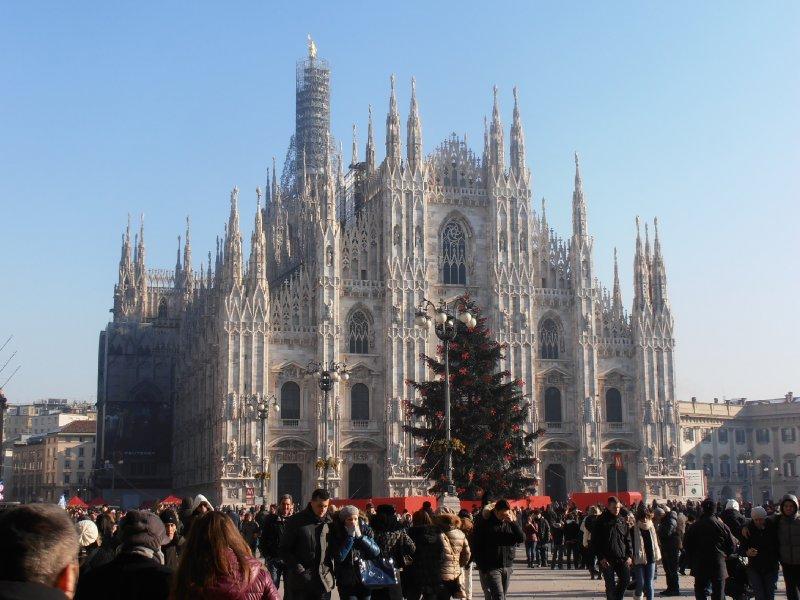 View of Duomo and Christmas Tree!