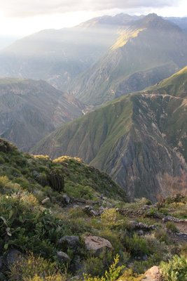 aine doing her recce for our descent to colca valley. can you find her in the photo?