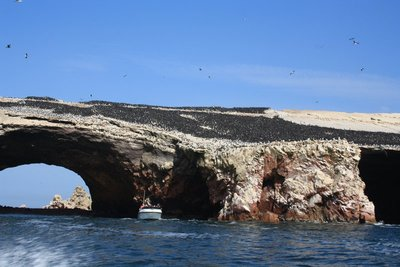 approaching one of the Ballestas Islands