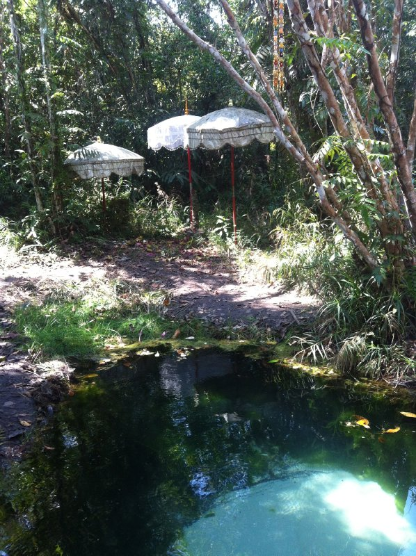 Holy water from this springs flows over the carved lingas of the riverbed