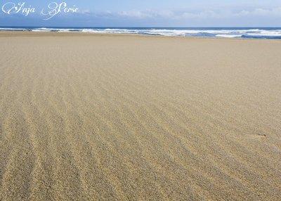 Foz Beach