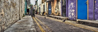 Pigeon St Singapore