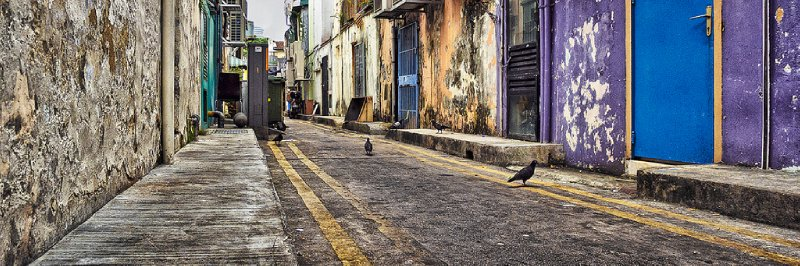 Pigeon St Singapore