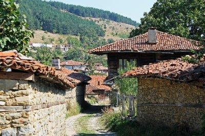 Balkan Mountain View