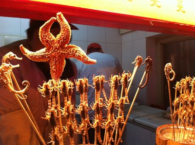 Scorpions and starfish, Beijing, China