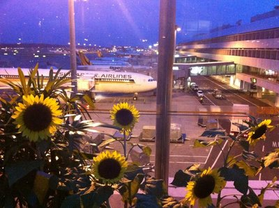 The Sunflower Garden, Singapore Airport