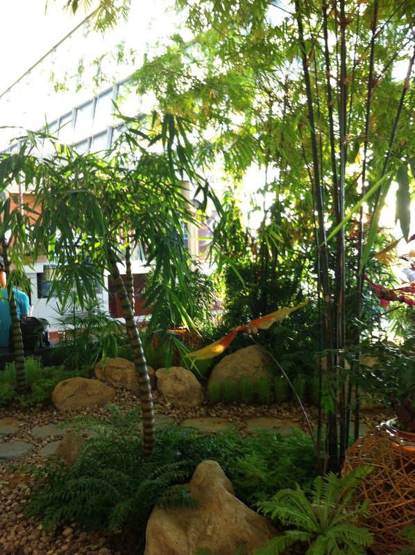 Bamboo garden at Singapore Airport