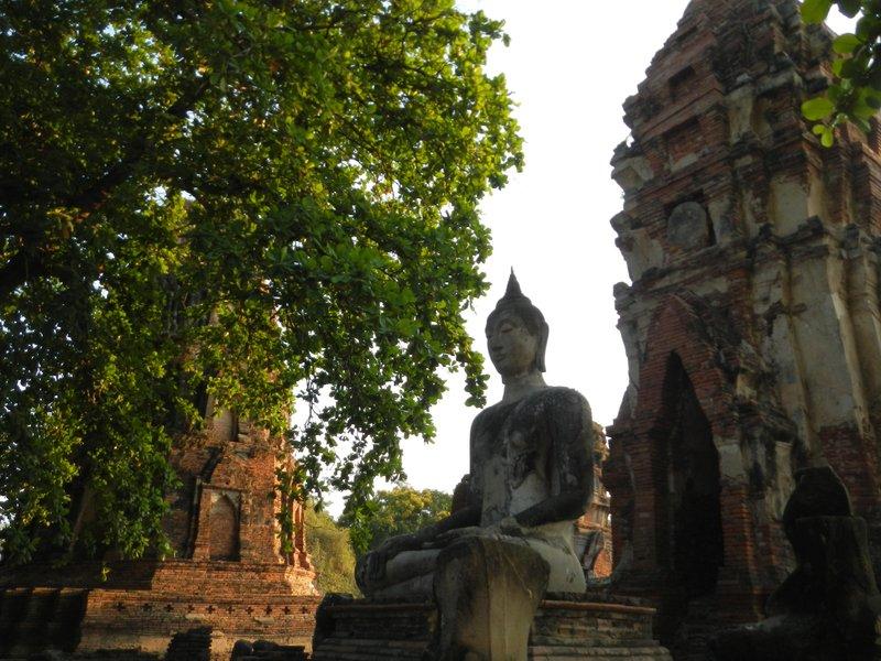 large_Bangkok___Ayutthaya_315.jpg