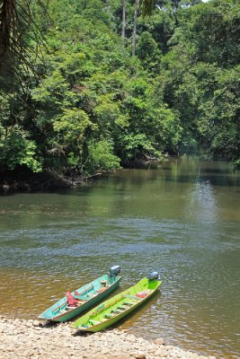 Colourful longboats (Ulu Temburong National Park)