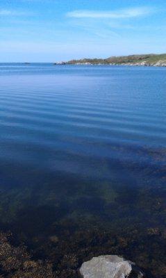 Ocean Clarity
