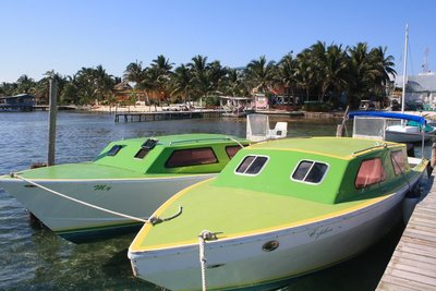 Caye Caulker, Belize, Dec 2014