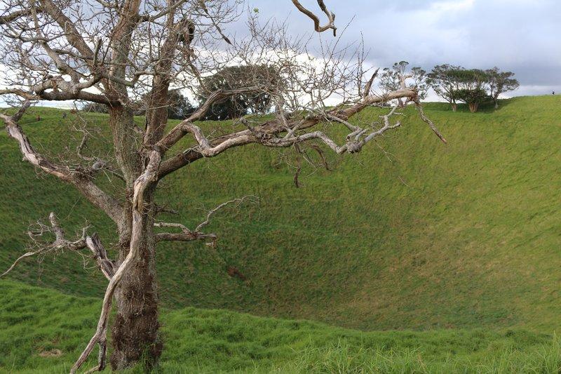 The crater of Mt Eden