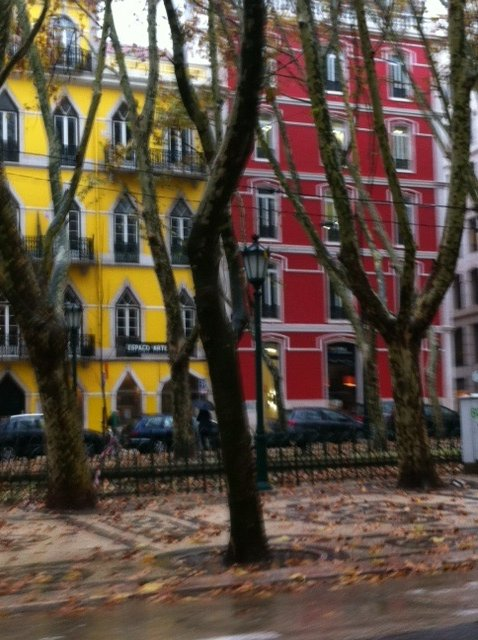 Beautiful colours in Lisbon