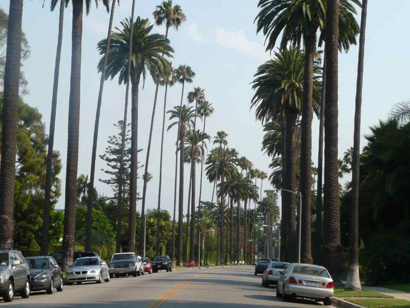 Los Angeles Beverley Hills Drive