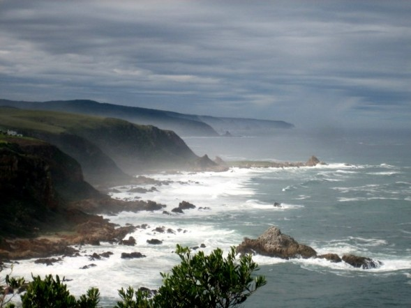 Coast of S. Africa
