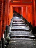 Hundreds of gates form at dark road ahead (Fushimi Inari)