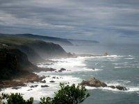 Coast of S. Africa