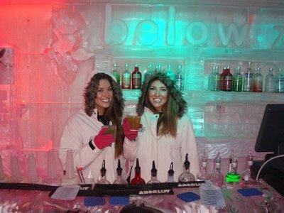Ice Bar - Queenstown