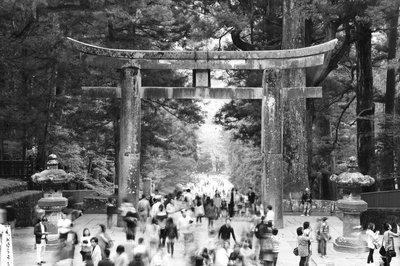 Shinto Shrine's Torii