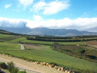 Der Weg zum Weingut